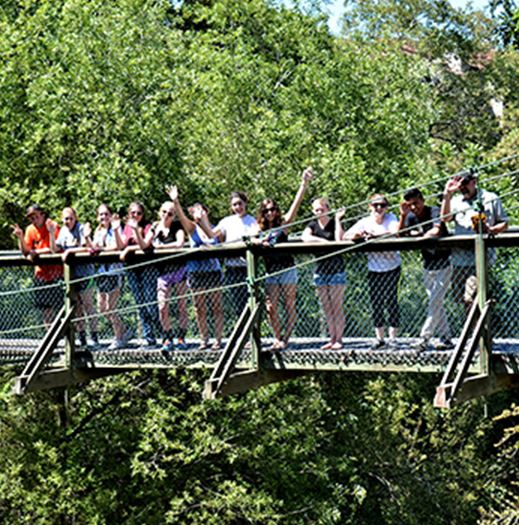 People on a bridge looking into nature